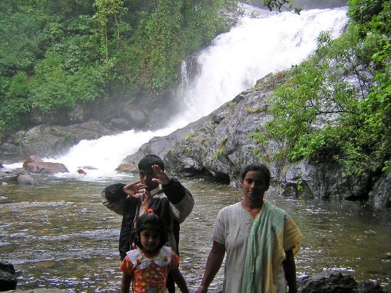 Munnar Inn: Lovely water falls