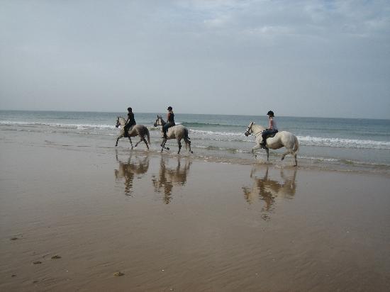 Alfamar Beach & Sport Resort: The beach