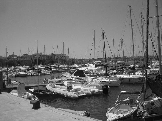 Otranto, İtalya: The port
