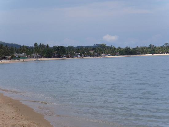 Paradise Beach Resort: The Beach
