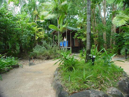 Kewarra Beach Resort & Spa : Bungalow