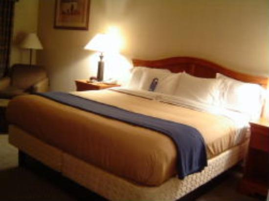 Holiday Inn Express Victor: The comfortable bed
