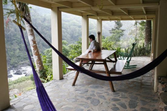 Black Rock Lodge: It is best to rise early and watch Belize come to life. The birds, the bugs, the orchids...