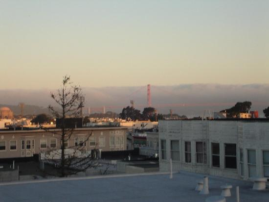 Redwood Inn: View from the Roof