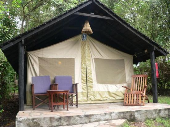 Sarova Mara Game Camp: My tent