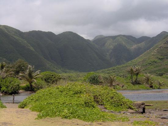 Maunaloa, Гавайи: Down in the Valley in east Molokai