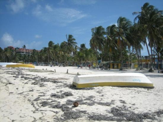 سول كاريب سان أندريس - شامل جميع الخدمات: Beach near our hotel