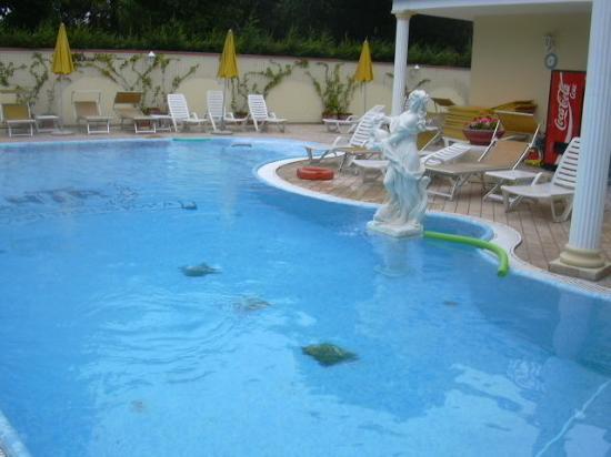 La piscina coperta foto di hotel terme roma abano terme - Hotel piscina roma ...