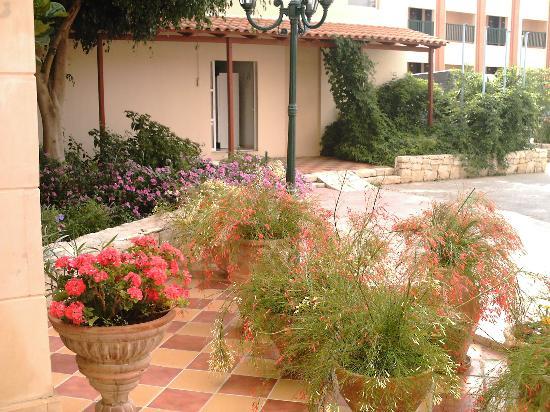 Golden Beach Hotel: les fleurs devant l'hôtel