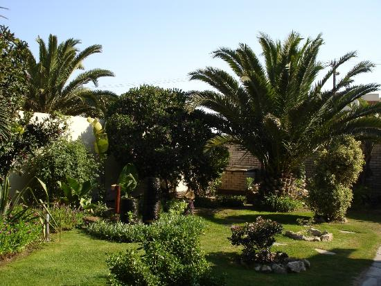 Sam's Giardino: Another view of the garden