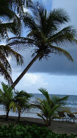 Bel Air Plantation Resort: Location of ceremony