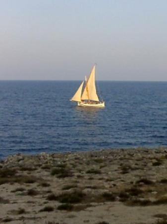 Portocolom, España: view from diso room