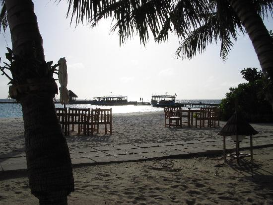 Veligandu Island Resort & Spa: sitting at the bar at about 10 past 6 PM.