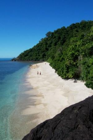 Daintree Crocodylus: Snapper Island camping beach