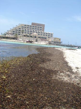 Na Balam Beach Hotel: Nabalam beach 2