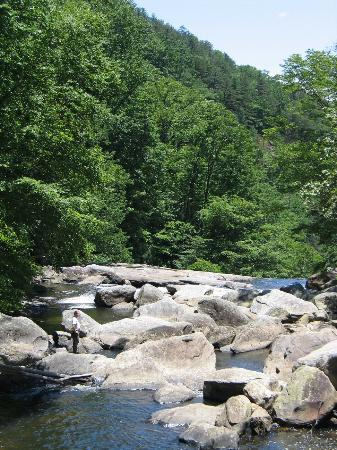 Horsepasture River and Nature Trails : Above Windy Falls - Downstream