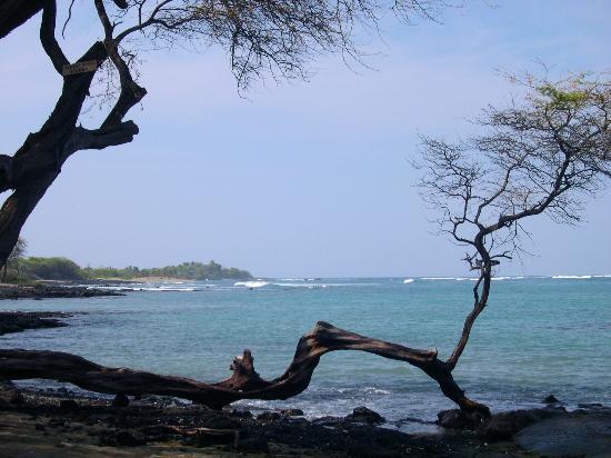 Paniolo Greens Resort: Lovely ocean views