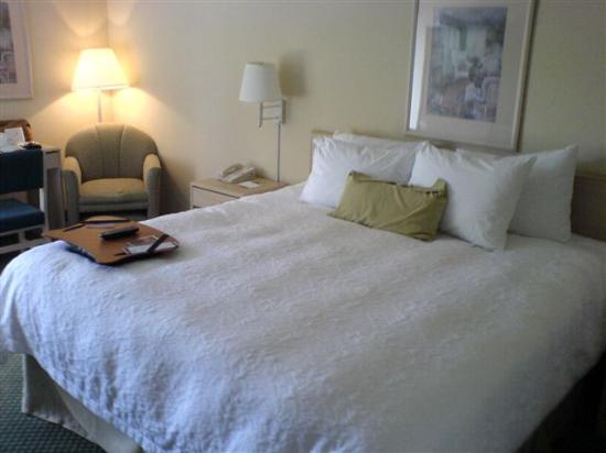 ‪‪Hampton Inn & Suites Wilmington/Wrightsville Beach‬: comfy, clean bed‬