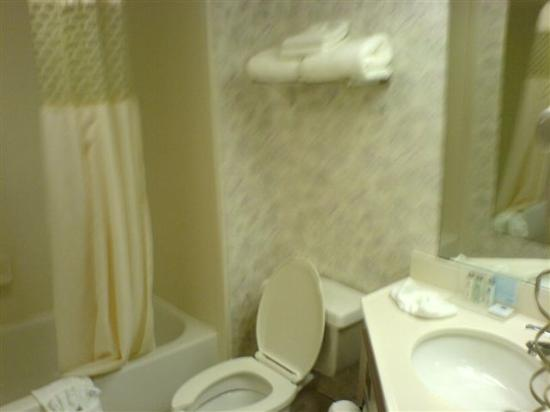 Hampton Inn & Suites Wilmington/Wrightsville Beach: great power shower!