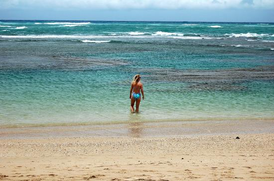 Club Villas Jazmin: Nice warm water on the beach