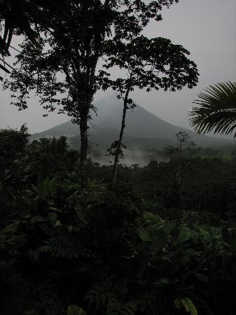 Lost Iguana Resort & Spa Foto