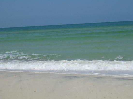 Whispering Pines of Cape San Blas : Pretty green water at the national park