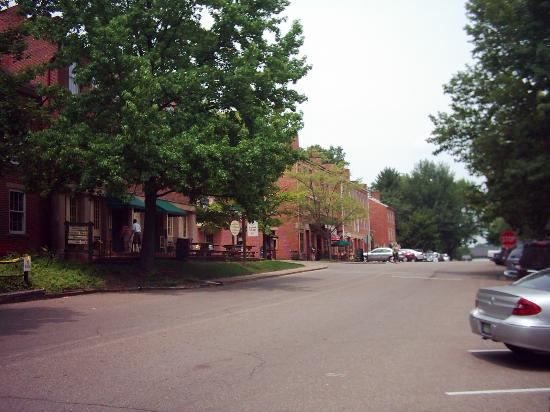 Coshocton Village Inn & Suites: View of Roscoe village nearby