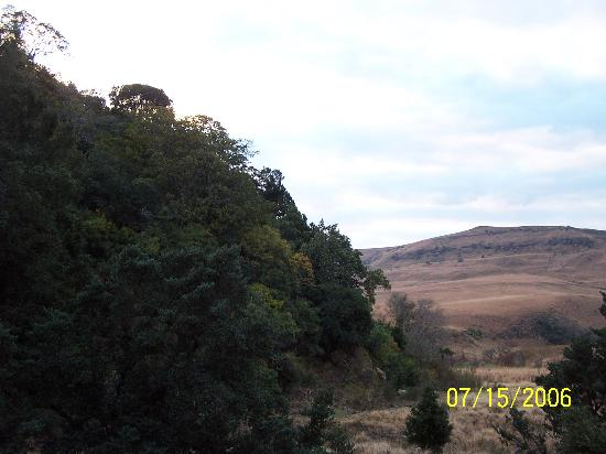 Alpine Heath Resort: view from Steve's falls hike