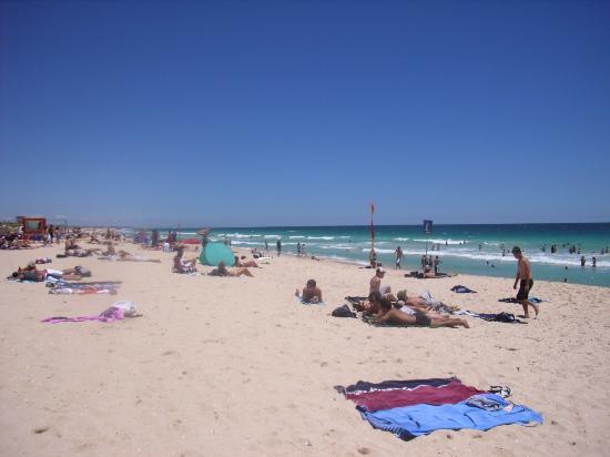 Scarborough Beach : Beach