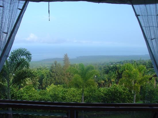 Aloha Guest House: the view from our bed