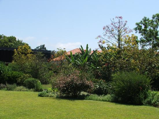 Quinta da Casa Branca: Gardens