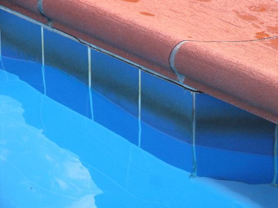 Hotel Villa Olivo: The swimming pool