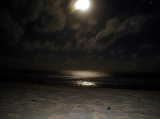 Romantic Moon Over Beach Picture Of Grand Hyatt Kauai Resort Amp Spa Poipu Tripadvisor