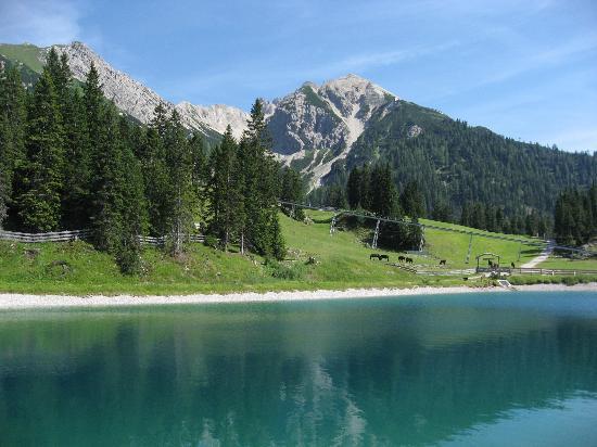 Seefeld in Tirol, Austria: Rosschute