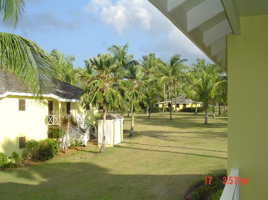 Nisbet Plantation Beach Club: View from porch up hill towards Main House.