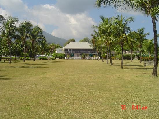 Nisbet Plantation Beach Club: View from halfway, facing towards Main House.