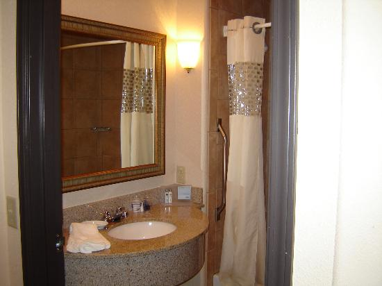 Hampton Inn & Suites Denton: bath