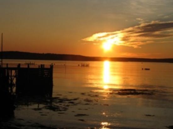 Harmony Bed & Breakfast: Sunrise on Brier Island Near By