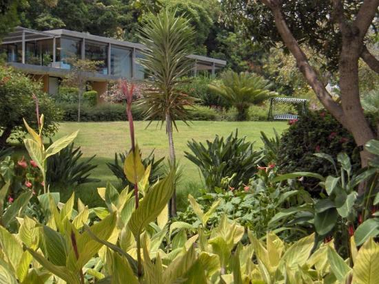 Quinta da Casa Branca: Reception and deck bar from gardens