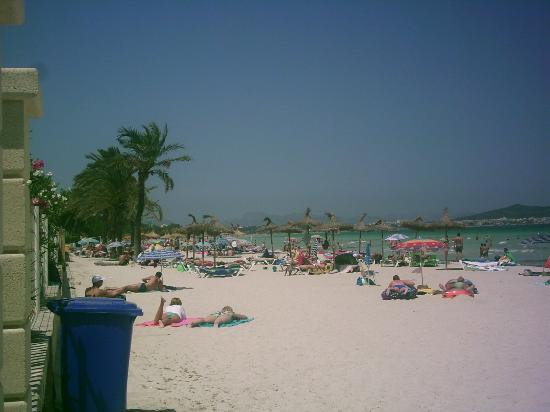 Eden Alcudia: really nice beach