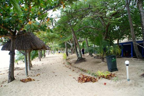 Malolo Island Resort: Path in front of bure looking away from the main jetty