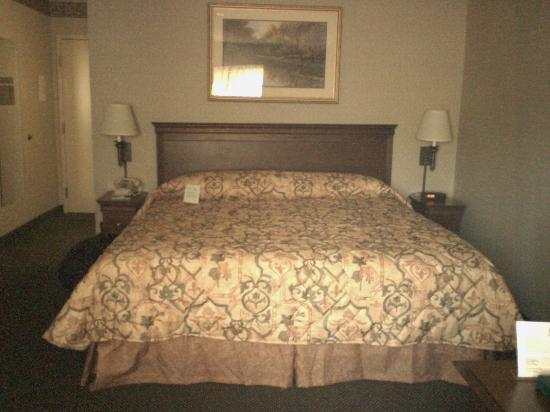 Country Inn & Suites By Carlson, Bothell: King bed at the Country Inn & Suites Bothell