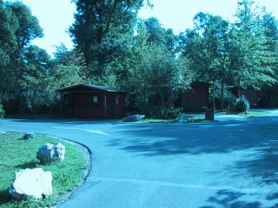 Disney's Davy Crockett Ranch : The breakfast cabin