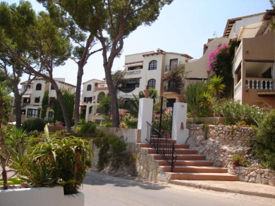 Hotel Cala Fornells: Some of the beautiful villas walking to Paguera