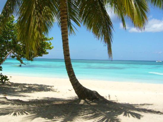 La Romana, República Dominicana: le paradis