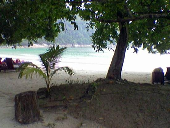 Pangkor Laut Resort: beach