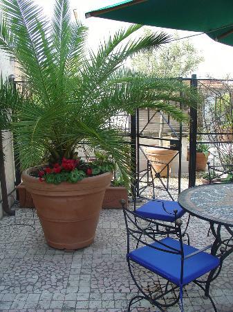 Celio Hotel : Celio Garden