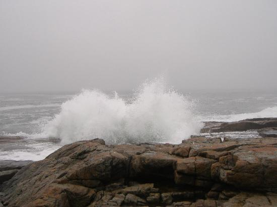A gray, rainy day at Schoodic Point, October 2005