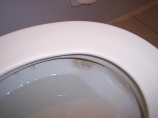 Ramada Limited Cockeysville: The moldy/dirty inside of the toilet