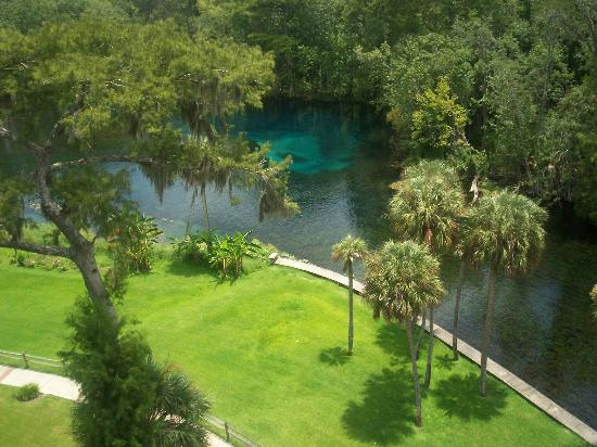 "Silver Springs, Floride : View from ""ride"""